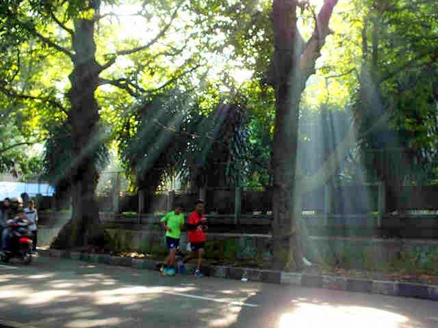 Teknik Ray of Light - ROL dalam fotografi