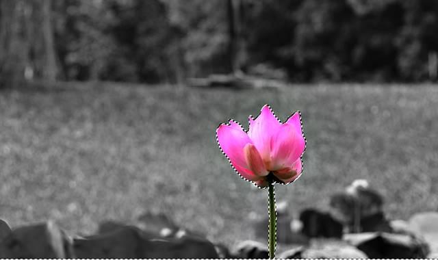 cara membuat efek selective color dengan GIMP AA11